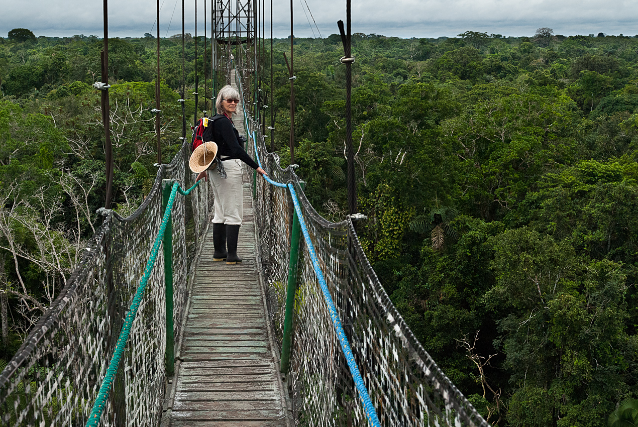 The Canopy walk, 42 m above ground