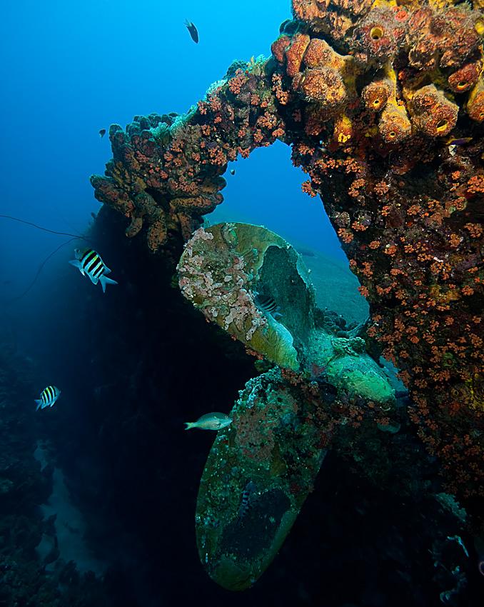 The Wreck of Hilma Hooker