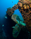 The Wreck of Hilma Hooker