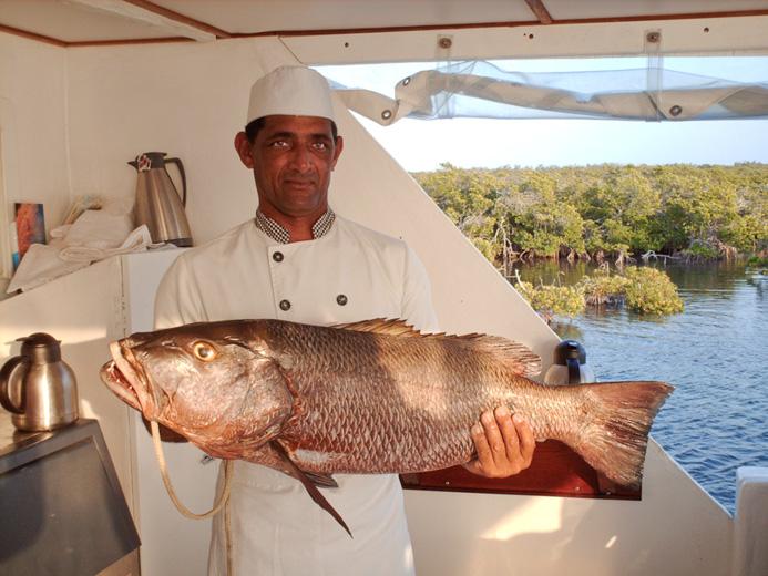 Stor fisk till middag