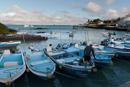 Fiskmarknaden