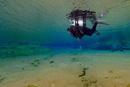 Salva in the blue lagoon