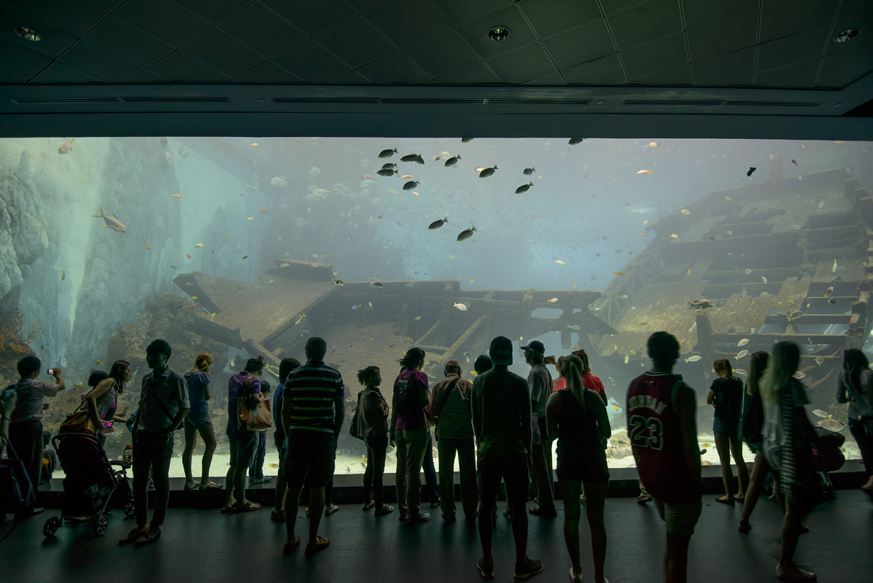 Singopore Aquarium, super big tanks!