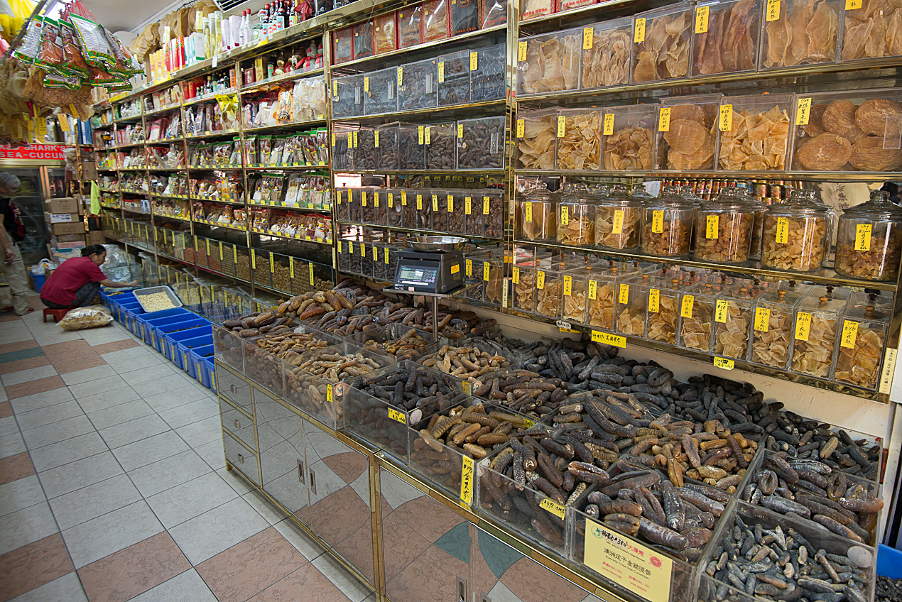 Chinese retailer selling all kinds of dried endangered sea creatures