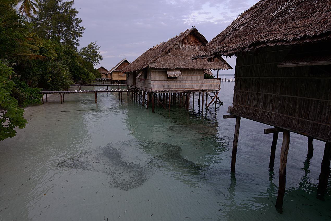 Kri resort bungalows with shoal of fish