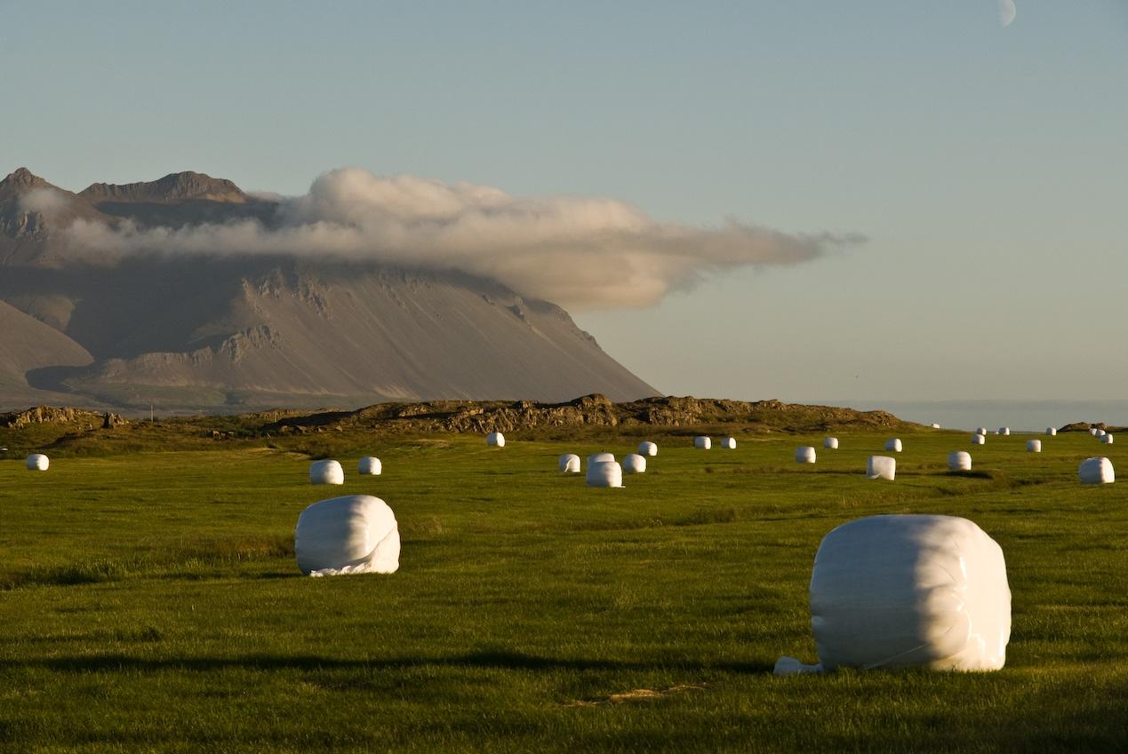 Skarðsheiði in Borgarfjörður