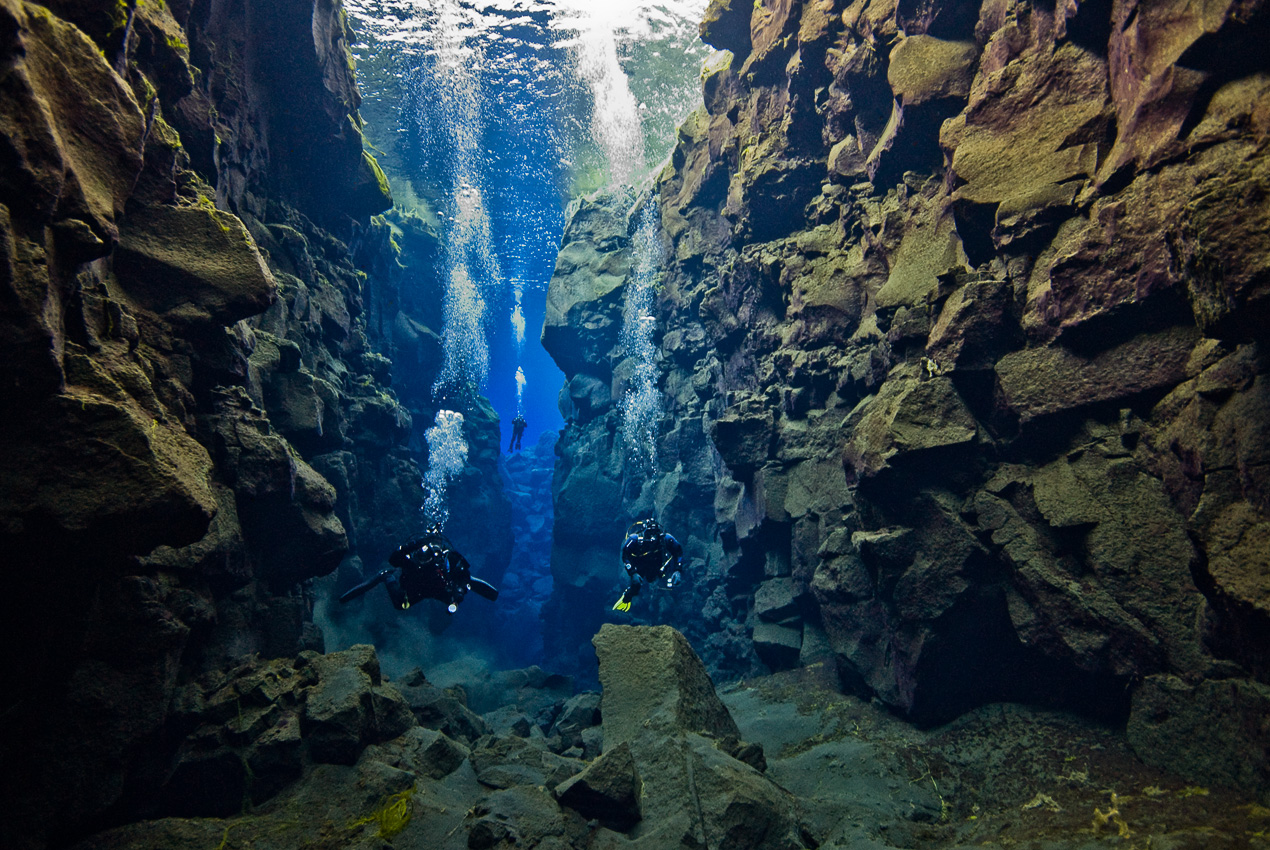 "Divers in the ""Catherdral"""