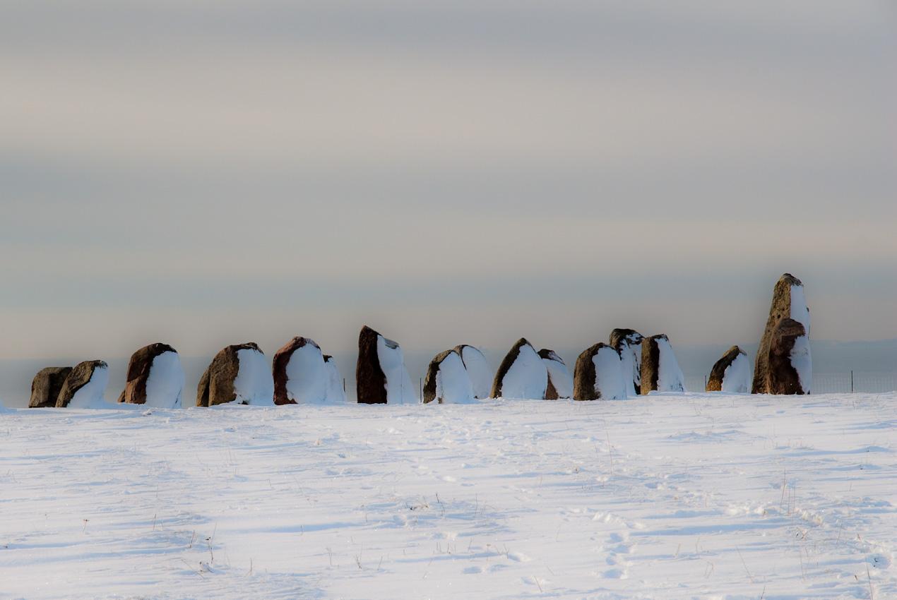 Huvudlösa pingviner