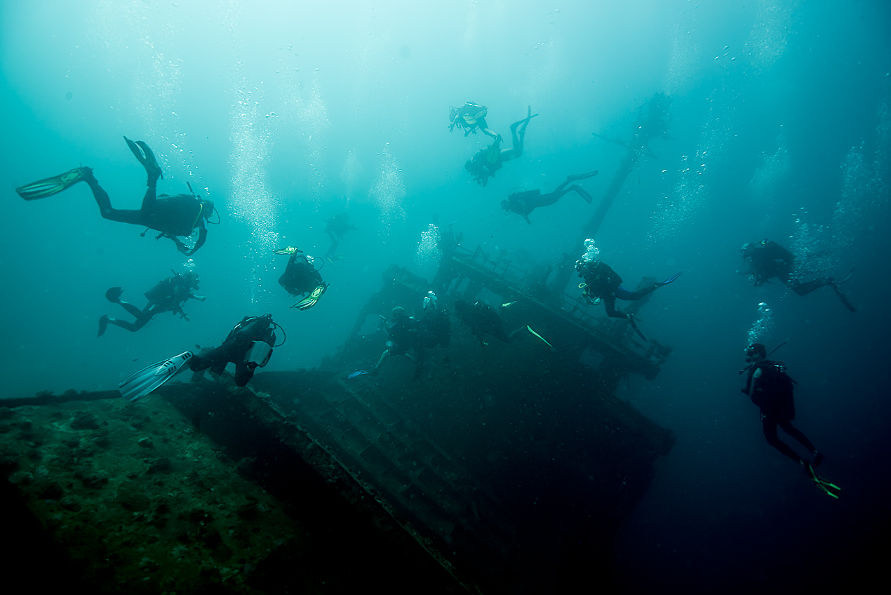 typical Maldivian wreck dive