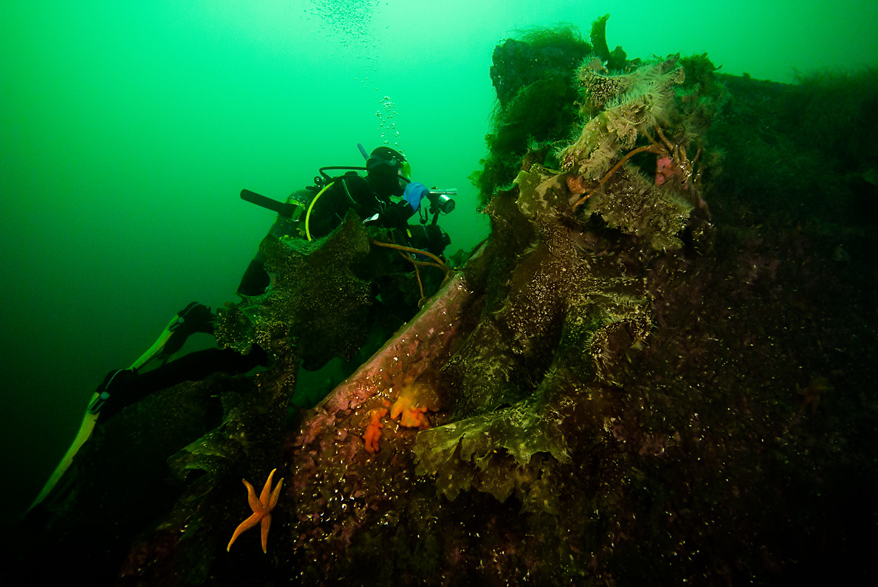 Steina and the wreck of ore freighter M/S Neuenfels