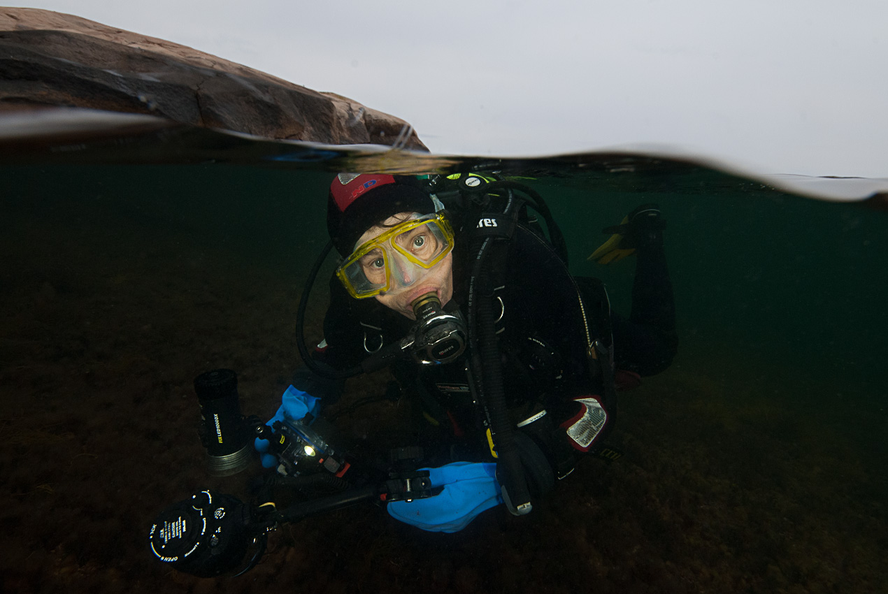 Steina below the surface